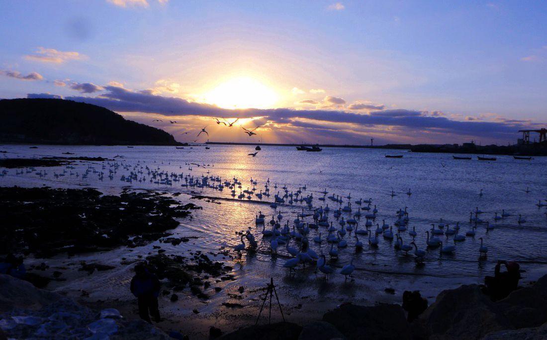 山东威海荣成风景