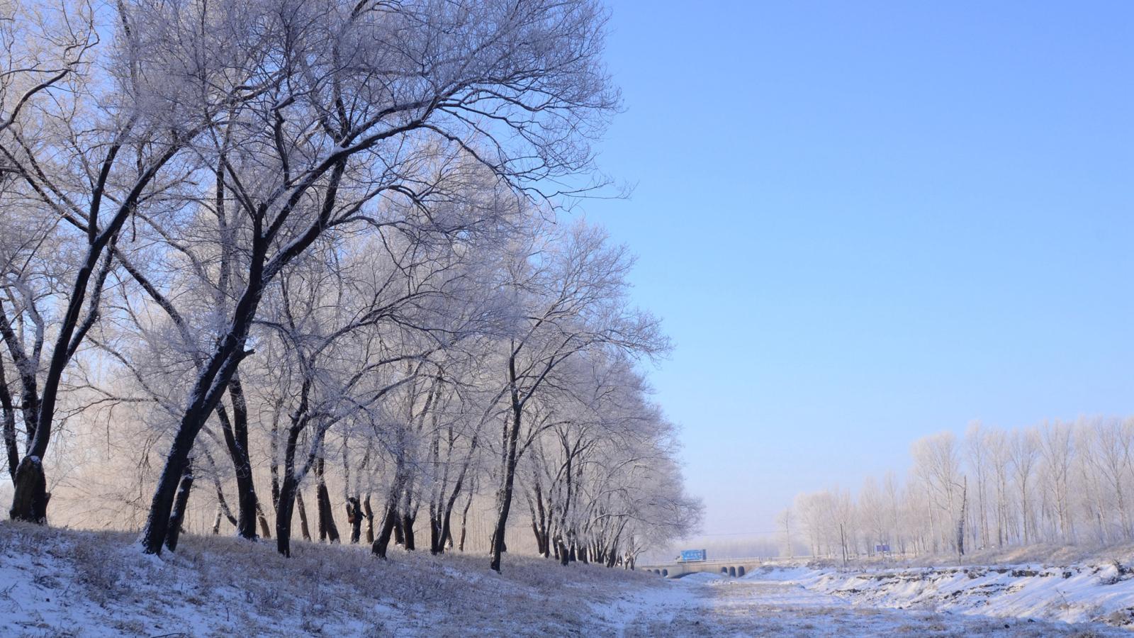 12.22j家乡雾凇 _ 自然风景 _ 中国风景摄影网
